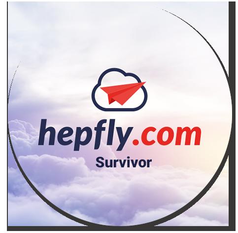 hepfly-image-1